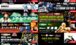 【METAL ROBOT魂】Ex-Sガンダム タスクフォースα 9月20日(水)23:00締切です